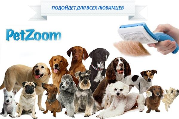 http://sundukzhelaniy.ru/images/upload/104.jpg